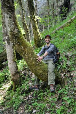 ...und Mike flüchtet auf den Baum :)