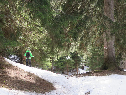 Die Schneeschuhtour runter ins Tal