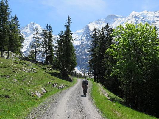 Erste Sicht auf Mönch und Jungfrau mit Silberhorn