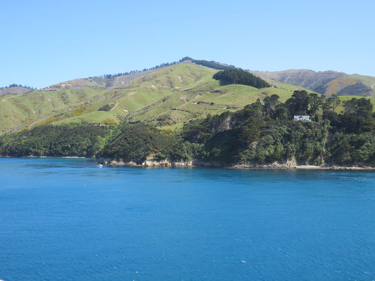 #marlboroughsounds