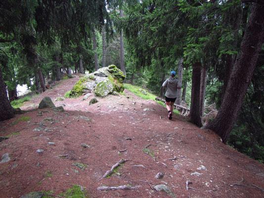 Berglauf am Sonntag nach Niederwald und über Bellwald zurück nach Fiesch