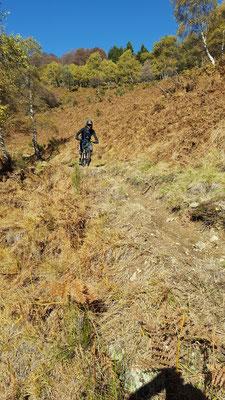 MTB Tour Monte Tamaro