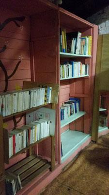 La bibliothèque des Casseuses de crise
