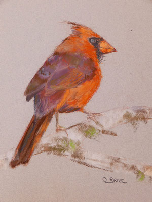 Oiseau 1 - pastel - 40x30