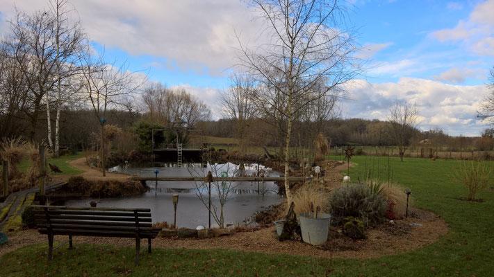 Der Teich bekommt eine Eisschicht