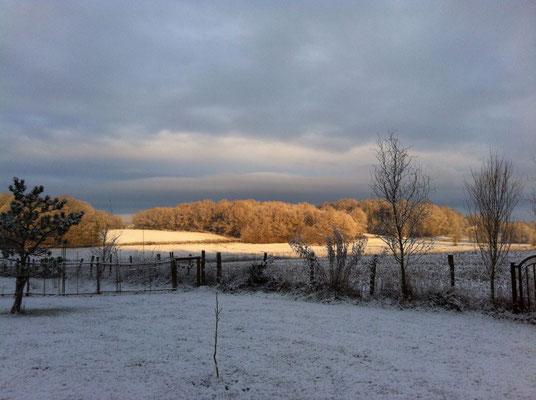 Schöne Winterstimmung, wieder mal alles in weiss