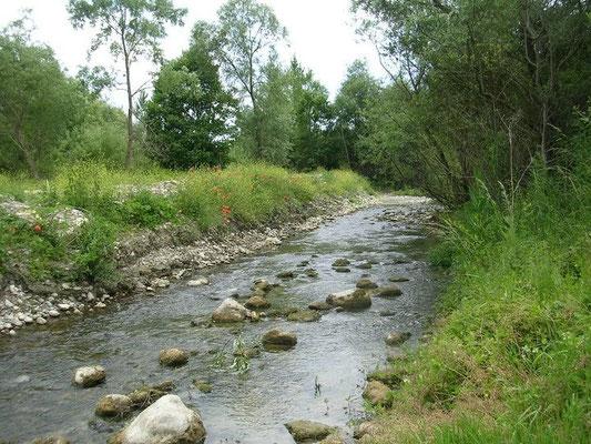 il torrente fredane