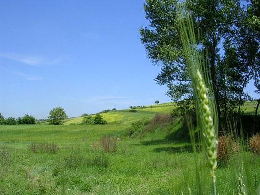 Valle del Fredane