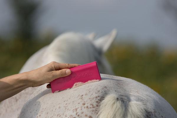 fellschön in magenta-pink