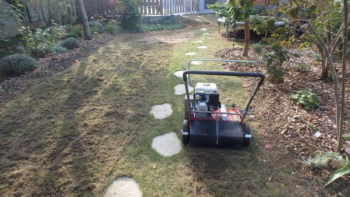 Scarification mécanique de pelouse