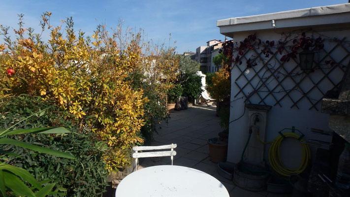 Ambiance jardin en toiture terrasse