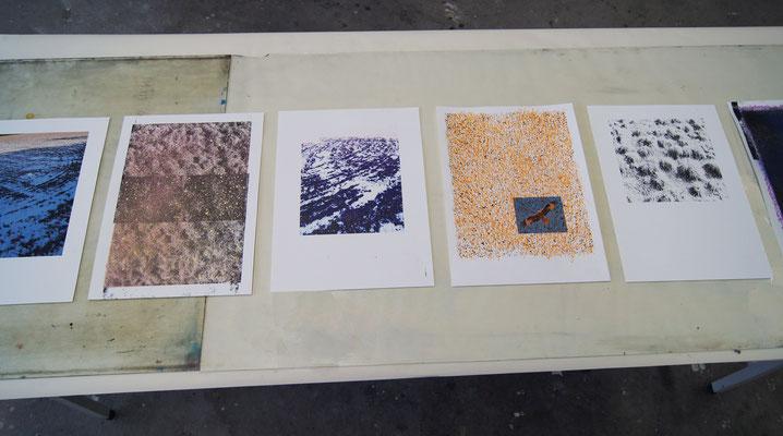 Feld 1-6, Digitalfotografie, Zeichnung, Acrylspray,Markierungsspray  29,7cm x 42cm, 2018, Wiepersdorf