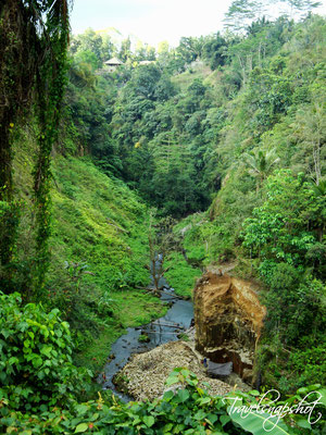 Blick über das Tal in Ubud