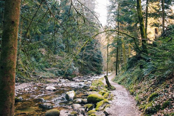 Weg entlang des Grobbaches