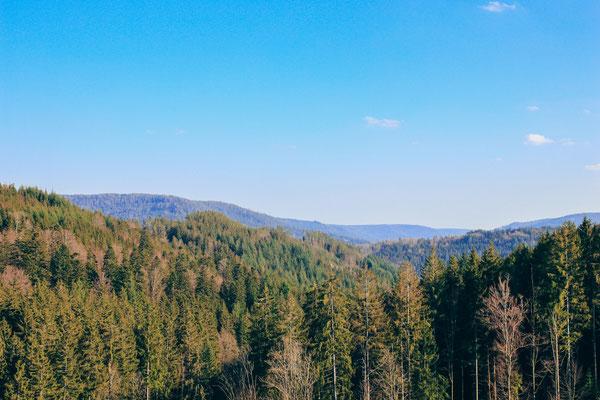 Blick von der Staumauer der Schwarzenbach Talsperre