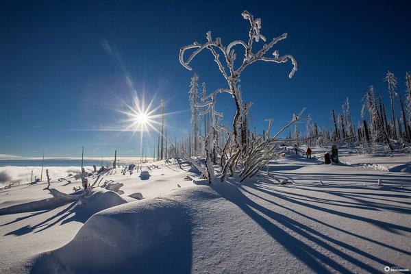Wintertraum im Böhmerwald