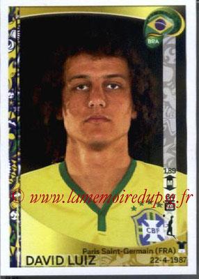 N° 117 - David LUIZ (2014-??, PSG > 2016, Brésil)