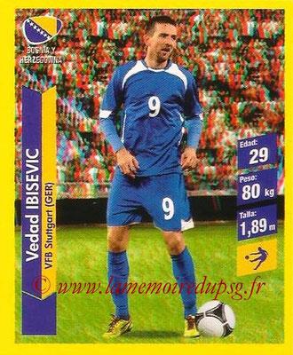 N° 206 - Vedad IBISEVIC (2004-05, PSG > 2014, Bosnie Herzegovine)