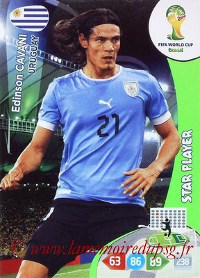 N° 313 - Edinson CAVANI (2013-??, PSG > 2014, Uruguay) (Star player)