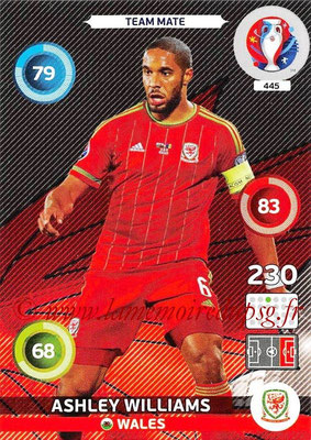 Panini Euro 2016 Cards - N° 445 - Ashley WILLIAMS (Pays de Galles)