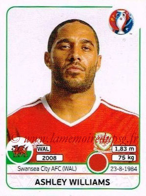 Panini Euro 2016 Stickers - N° 182 - Ashley WILLIAMS (Pays de Galles)