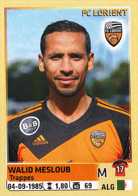 2014-15 - Panini Ligue 1 Stickers - N° 183 - Walid MESLOUB (FC Lorient)