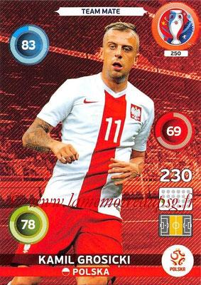 Panini Euro 2016 Cards - N° 250 - Kamil GROSICKI (Pologne)