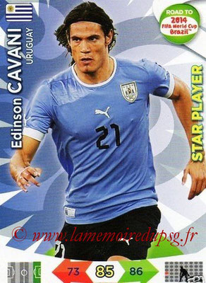 N° 189 - Edinson CAVANI (2013-??, PSG > 2014, Uruguay) (Star player)