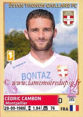 2014-15 - Panini Ligue 1 Stickers - N° 079 - Cédric CAMBON (Evian Thonon Gaillard FC)