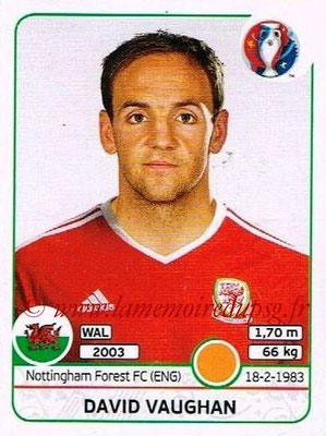 Panini Euro 2016 Stickers - N° 189 - David VAUGHAN (Pays de Galles)