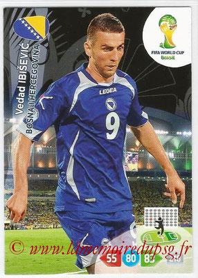 N° 045 - Vedad IBISEVIC (2004-05, PSG > 2014, Bosnie Herzegovine)