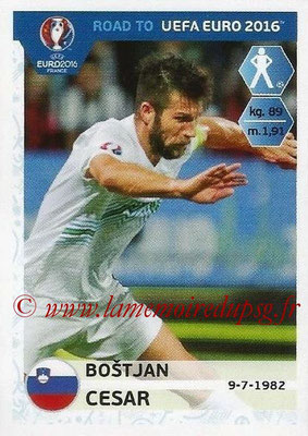 Panini Road to Euro 2016 Stickers - N° 290 - Bostjan CESAR (Slovénie)