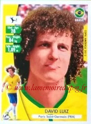 N° 191 - David LUIZ (2014-??, PSG > 2015, Brésil)