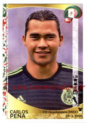 Panini Copa America Centenario USA 2016 Stickers - N° 221 - Carlos PENA (Mexique)