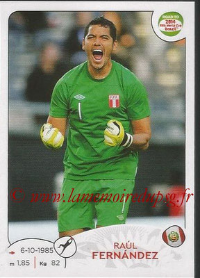 2014 - Panini Road to FIFA World Cup Brazil Stickers - N° 215 - Raul FERNANDEZ (Pérou)