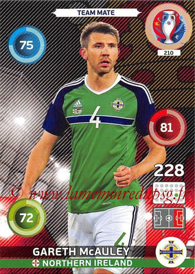 Panini Euro 2016 Cards - N° 210 - Gareth McAULEY (Irlande du Nord)