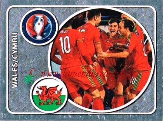 Panini Euro 2016 Stickers - N° 125 - Équipe du Pays de Galles