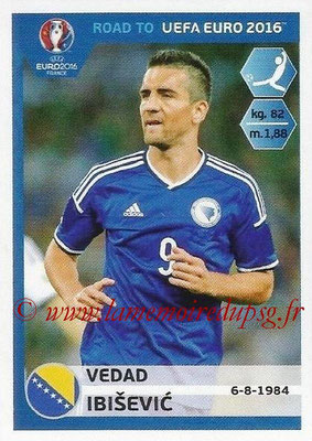 Panini Road to Euro 2016 Stickers - N° 031 - Vebad IBISEVIC (Bosnie Herzégovine)