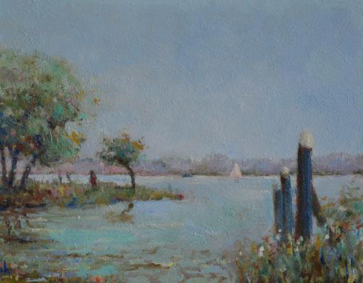 Zuidhaven, Biesbosch polder