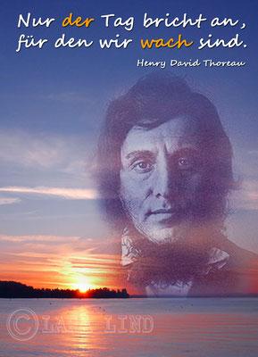 D.H. Thoreau