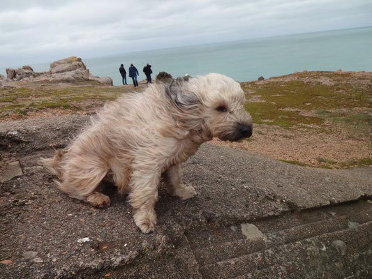 ...ziemlich windig hier...!