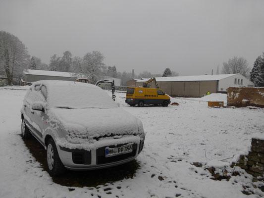 Schnee im Februar, ob das gut geht?