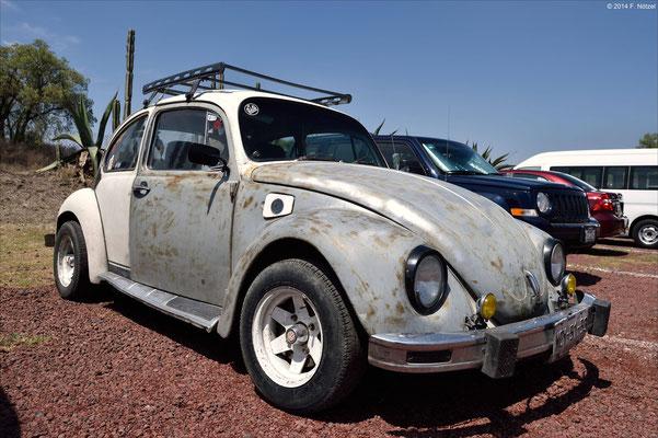 einer der Ur-VW Käfer (gebaut bis 2003 in Mexiko)