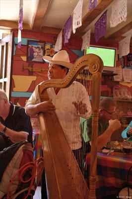 typischer Restaurant-Musiker