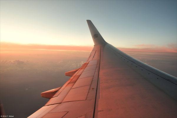 Flug in der Morgendämmerung