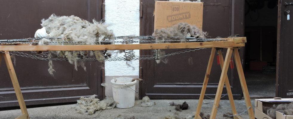 Verarbeitung von Wolle