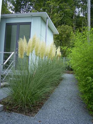 Moderne Pflanzenverwendung aus Pampasgras und Bambus