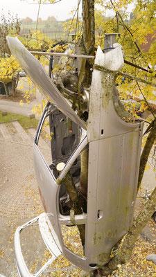 Das Auto im Baum