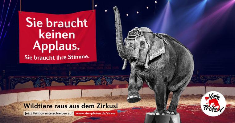 """Vier Pfoten """"Zirkus-Kampagne"""""""
