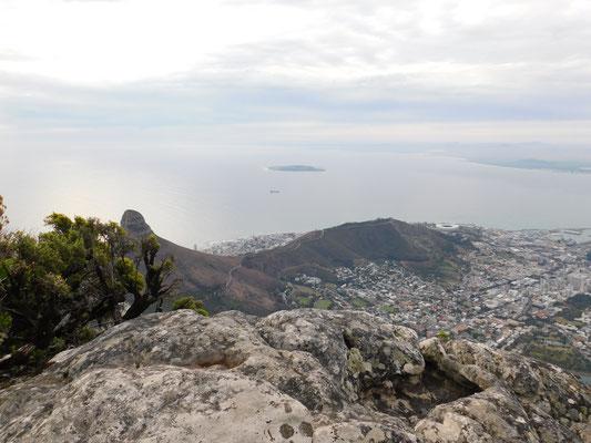 Tafelberg (Kapstadt)